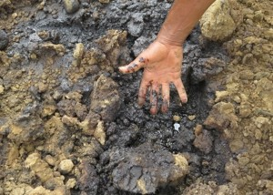 Land contaminated with oil around Shell's Bomu Manifold site, near K. Dere village in the Niger Delta. © Amnesty International